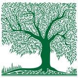 abstrakcjonistyczny zielony kształta kwadrata drzewo Ilustracji