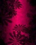 abstraktów różowe kwiaty, Zdjęcia Stock