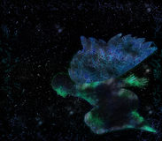 abstrakt ängel Arkivfoto