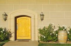 abstrakt arkitektonisk dörr Royaltyfria Bilder