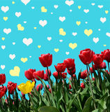Abstrakt background with tulips for greeting with a Happy Valent. Ine (March 8, February 14 vector illustration