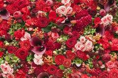 Abstrakt bakgrund av blommor Royaltyfri Fotografi