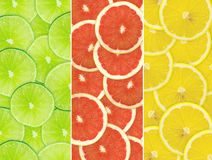 Abstrakt bakgrund av citrusa skivor   Royaltyfri Bild
