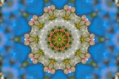 abstrakt bakgrund av den blom- modellen av en kalejdoskop Royaltyfri Foto