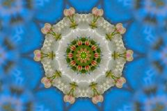 abstrakt bakgrund av den blom- modellen av en kalejdoskop Arkivfoton