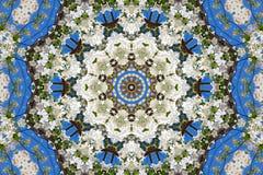 abstrakt bakgrund av den blom- modellen av en kalejdoskop Arkivbild