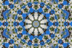 abstrakt bakgrund av den blom- modellen av en kalejdoskop Royaltyfri Bild