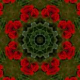 abstrakt bakgrund av den blom- modellen av en kalejdoskop Fotografering för Bildbyråer