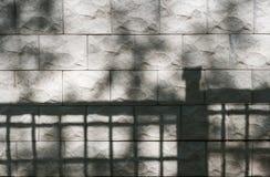 Abstrakt bakgrund av den texturerade stenväggen med skuggor av träd och staketet på den Royaltyfri Foto