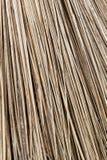 Abstrakt bakgrund av den torkade växtpinnen Arkivfoton