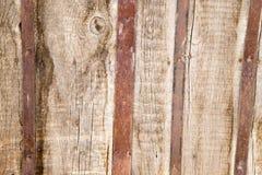 Abstrakt bakgrund av det gamla trästaketet Fotografering för Bildbyråer