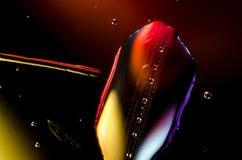 Abstrakt bakgrund av färgrika droppar och droppar av ramen för vatten eller för olja över huvud taget Royaltyfria Bilder