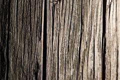 Abstrakt bakgrund av gammalt trä Arkivfoto