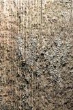 Abstrakt bakgrund av gammalt trä Arkivbild
