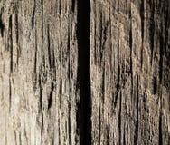 Abstrakt bakgrund av gammalt trä Royaltyfria Bilder