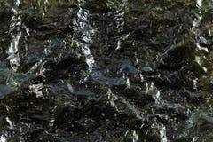 Abstrakt bakgrund av gräsplan torkad havsväxt Royaltyfria Bilder