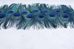 Abstrakt bakgrund av ljusa påfågelfjädrar Royaltyfria Bilder