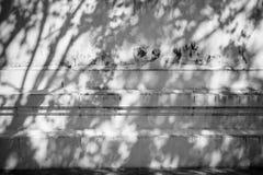 Abstrakt bakgrund av skuggor spricker ut på en vit väggbakgrund Arkivbilder