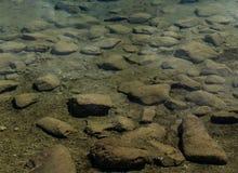 Abstrakt bakgrund av vaggar undervattens- i en lugna bergsjö Arkivbild