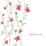 abstrakt bakgrund blommar red Royaltyfri Fotografi