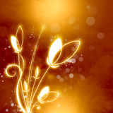 Abstrakt bakgrund för apelsin med guld- blommor Royaltyfria Foton
