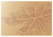 Abstrakt bakgrund för bladtryckvektor Arkivfoton