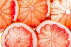 Abstrakt bakgrund för citrusa skivor Royaltyfri Bild