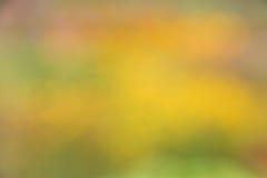 Abstrakt bakgrund för hösten/för nedgången - gör suddig materielfoto Fotografering för Bildbyråer