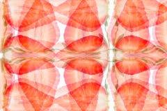 Abstrakt bakgrund för jordgubbe Modell av skivajordgubben En ljus radda, är nya bär av en jordgubbe royaltyfri foto