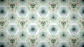 Abstrakt bakgrund för modell för vit blomma Arkivbild