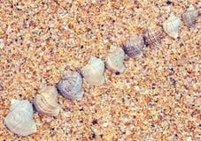 Abstrakt bakgrund för strand Royaltyfria Foton