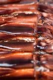 Abstrakt bakgrund för tioarmad bläckfisk Arkivfoto