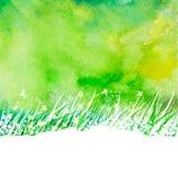 Abstrakt bakgrund för vattenfärg med gräs för handteckningsträdgård Royaltyfri Fotografi