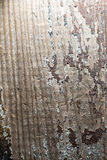 Abstrakt bakgrund från ett gammalt träbräde Arkivfoto
