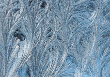 abstrakt bakgrund från frostig modell på exponeringsglas i form av päls- ris och fjädrar Arkivbild