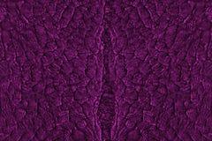 Abstrakt bakgrund för natur, purpurfärgade vågformer Arkivbild