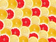 Abstrakt bakgrund med citrusfrukt av grapefrukten, apelsin och Royaltyfri Foto