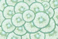 Abstrakt bakgrund med citrusfrukt av limefruktskivor Fotografering för Bildbyråer