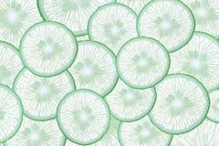 Abstrakt bakgrund med citrusfrukt av limefruktskivor Arkivfoton