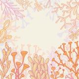 Abstrakt bakgrund med koraller Arkivfoto