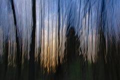 Abstrakt bakgrund med suddiga vertikala linjer i apelsin, blått och svart Royaltyfria Foton