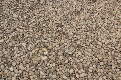 Abstrakt bakgrund med torra runda reeble stenar Arkivfoton