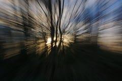 Abstrakt bakgrund med vertikala och radiella linjer Arkivfoton