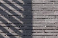 Abstrakt bakgrund - skugga på en trottoar som göras av mörka tegelstenar Arkivbild