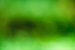 abstrakt bakgrund suddighet green Royaltyfria Foton