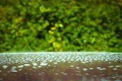 abstrakt bakgrund suddigheta bubblor Arkivbild