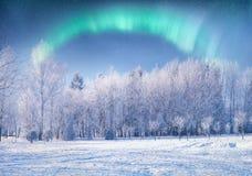 abstrakt bakgrund tänder den nordliga vektorn Royaltyfri Fotografi
