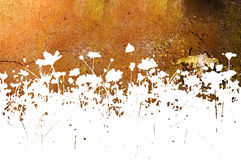 abstrakt bakgrunder blommar texturer Royaltyfria Bilder