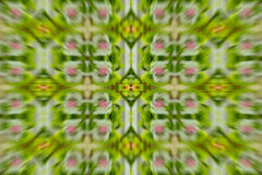 abstrakt bakgrundsblommapink Royaltyfria Bilder