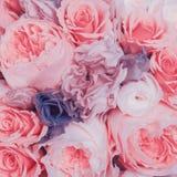 abstrakt bakgrundsblommor Urblekt färgsignal Royaltyfri Fotografi